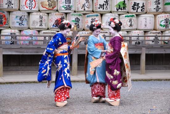Maiko in Matsuo Taisha Shrine