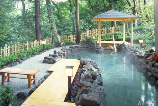 Himeshara Hot Springs, Hakone