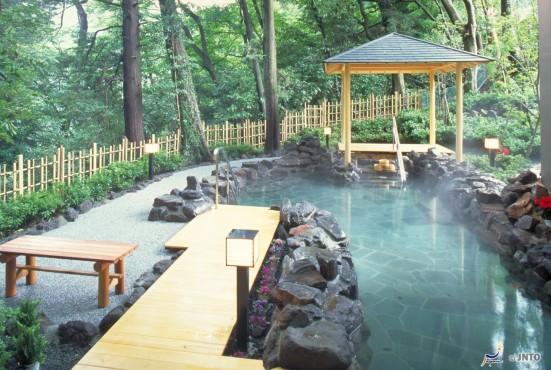 Himeshara Hot Springs, Hakone