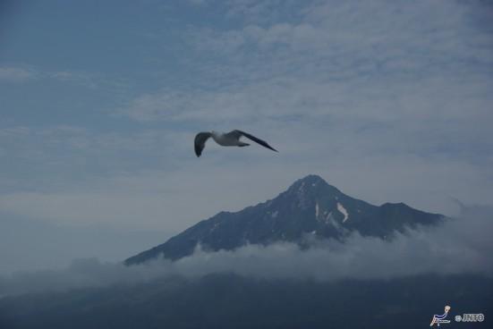 Mount Rishiri & seagull © Yasufumi Nishi/© JNTO