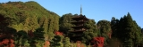 A to Wa of Japan: Week42