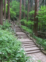 Postcard from Japan: Following in Basho's footsteps