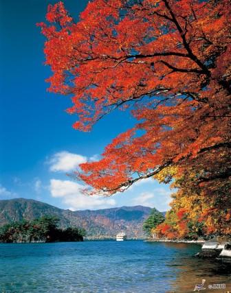 Autumn Leaves of Lake Towada-ko ©Aomori Prefecture/©JNTO