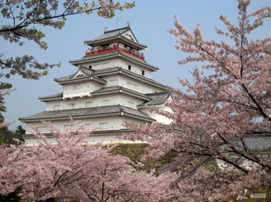 Tsuruga Castle in Aizuwakamatsu in spring ©Akira Okada/©JNTO