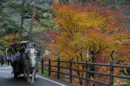 Shosenkyo Gorge ©Yasufumi Nishi/© JNTO