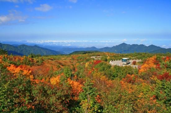 Tateyama Kurobe Alpine Route ©Toyama Prefectural Tourism Association/©JNTO