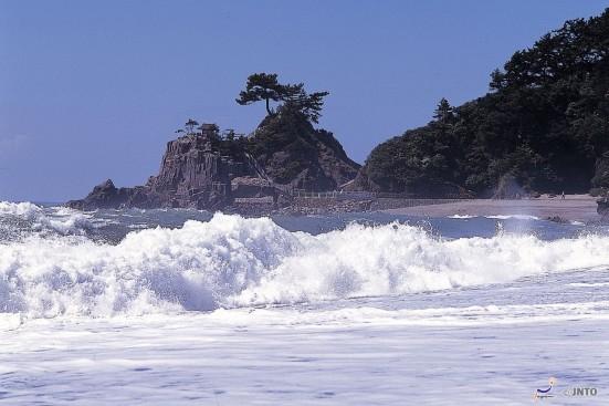Katsurahama © Kochi Visitors & Convention Association/©JNTO
