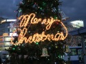 Merry Christmas in lights!