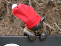 Christmas Kitty